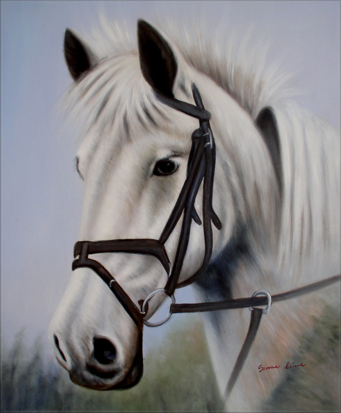 White Horse Head Portrait Hand Painted Oil Painting 20x24in Ebay
