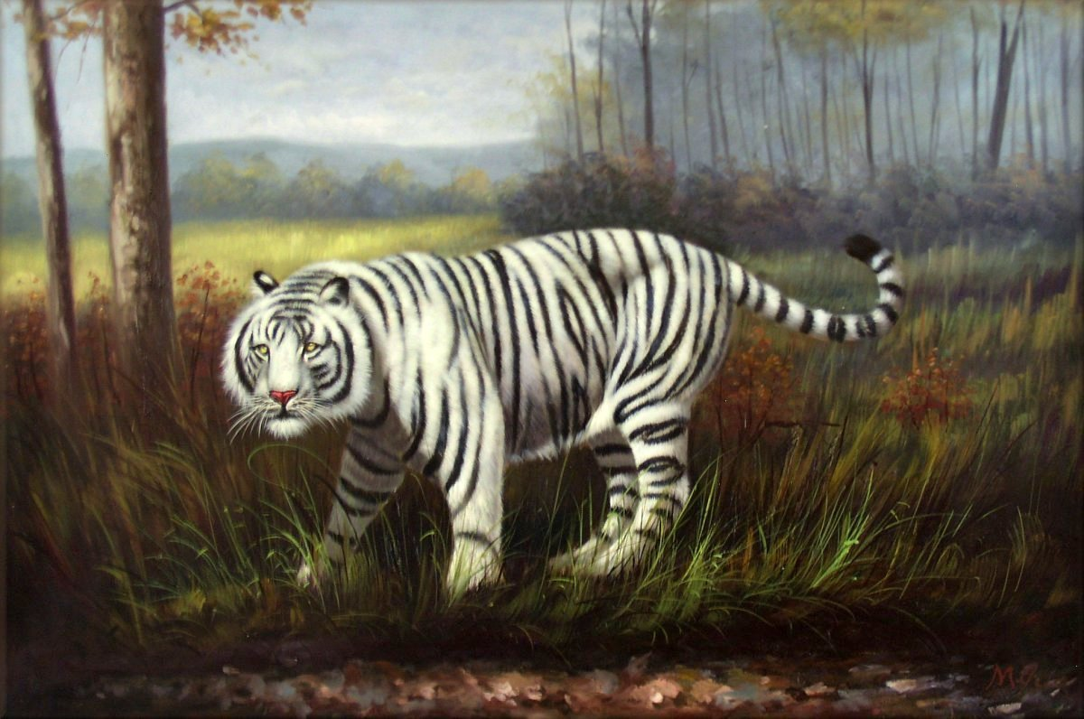 Quality Hand Painted Oil Painting Wild White Tiger 24x36in